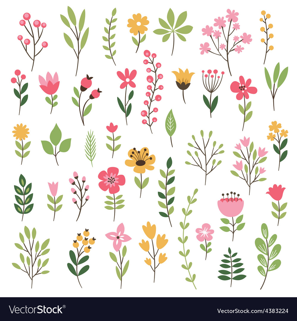 Colorful floral collection with leaves and flowers