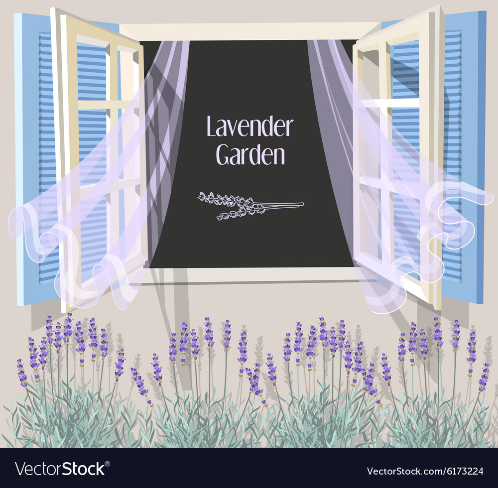 Window with blue shutters vector image