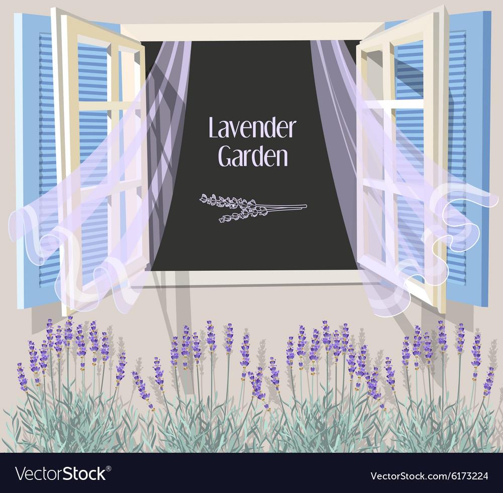 Window with blue shutters
