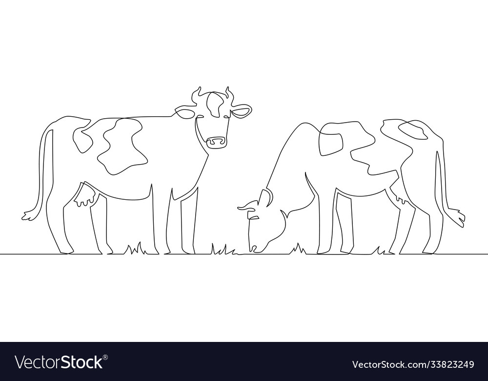 One line cows milk cow animal livestock and beef