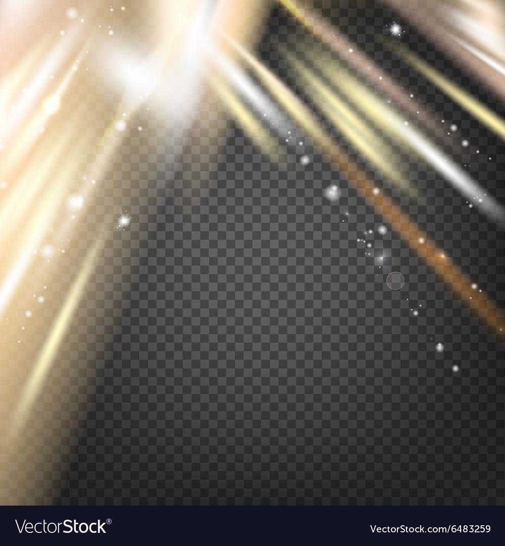 Northern Lights or Aurora vector image