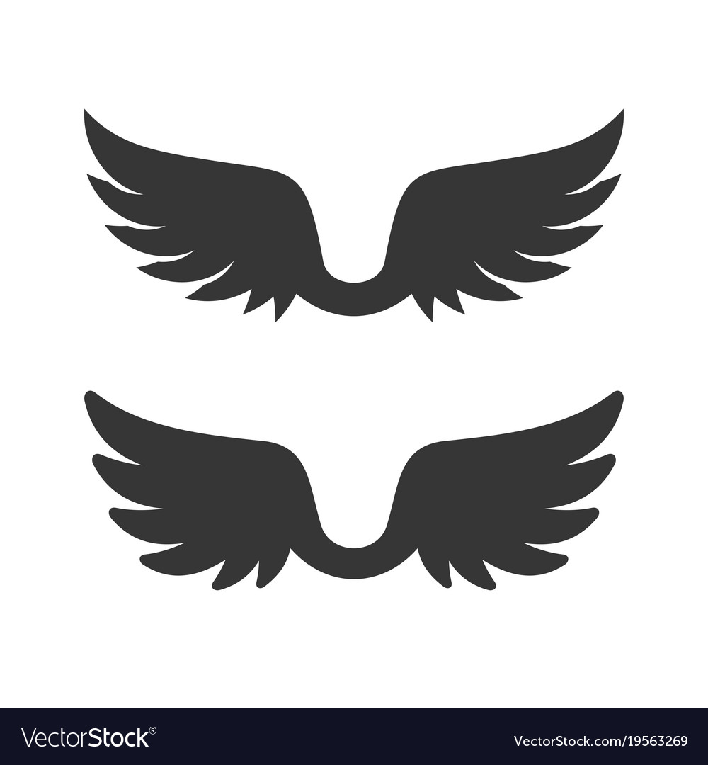Wings icon on white background vector image