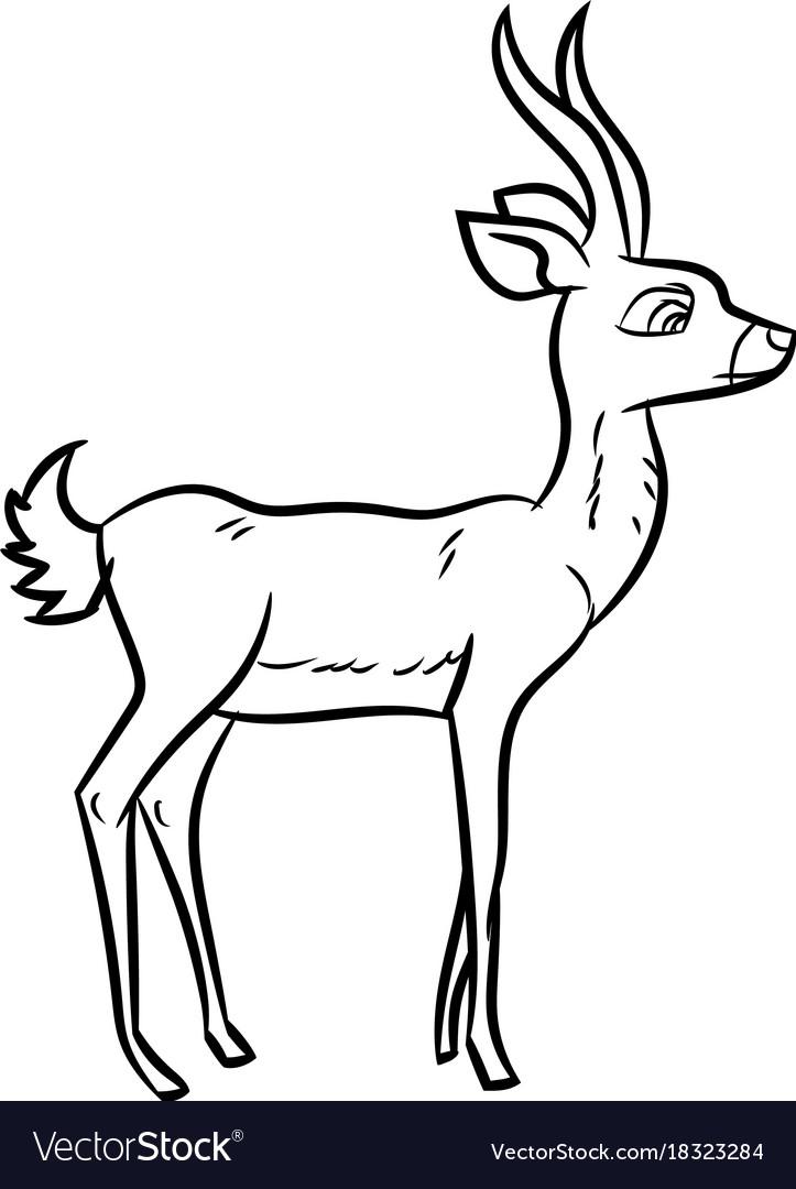 antelope cartoon line drawn royalty free vector image rh vectorstock com cartoon antelope images cartoon antelope head