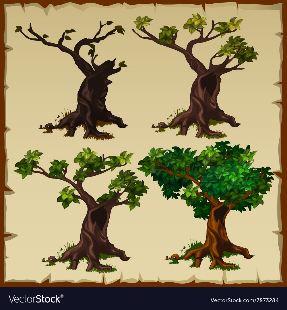 Four images of the tree with leaves and without