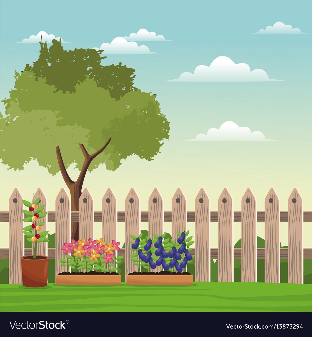Pot plants tree field fence vector image
