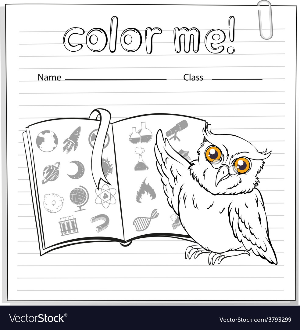 A worksheet showing an owl and a book