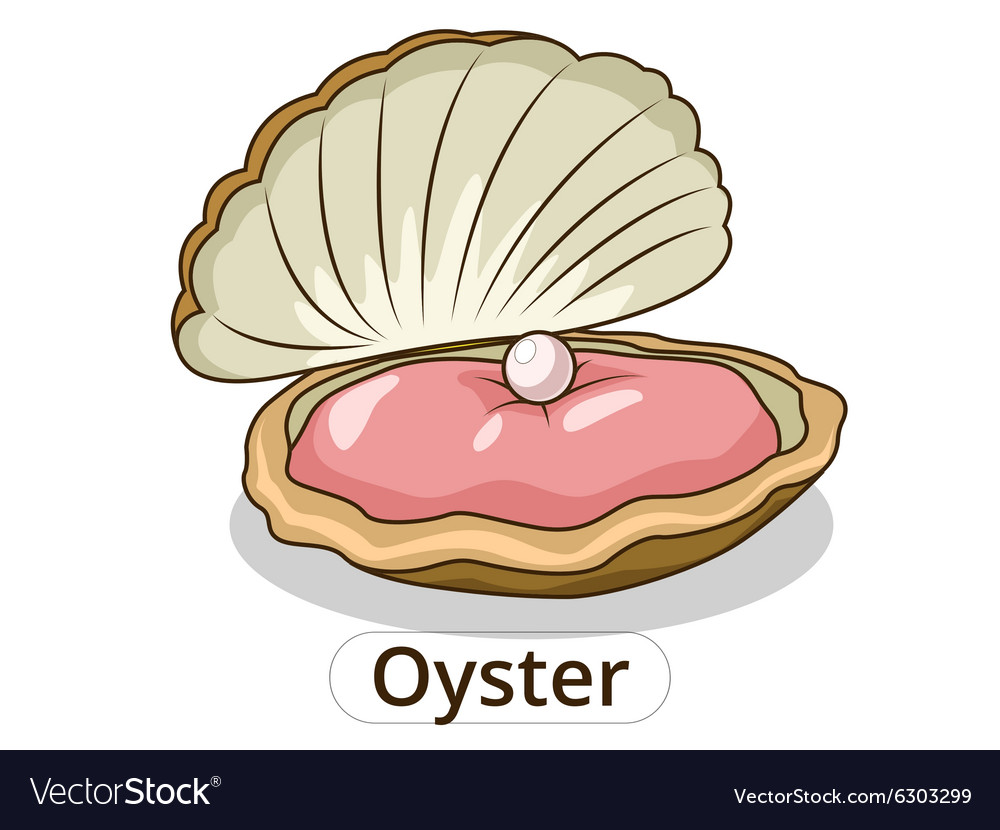 Oyster underwater animal cartoon