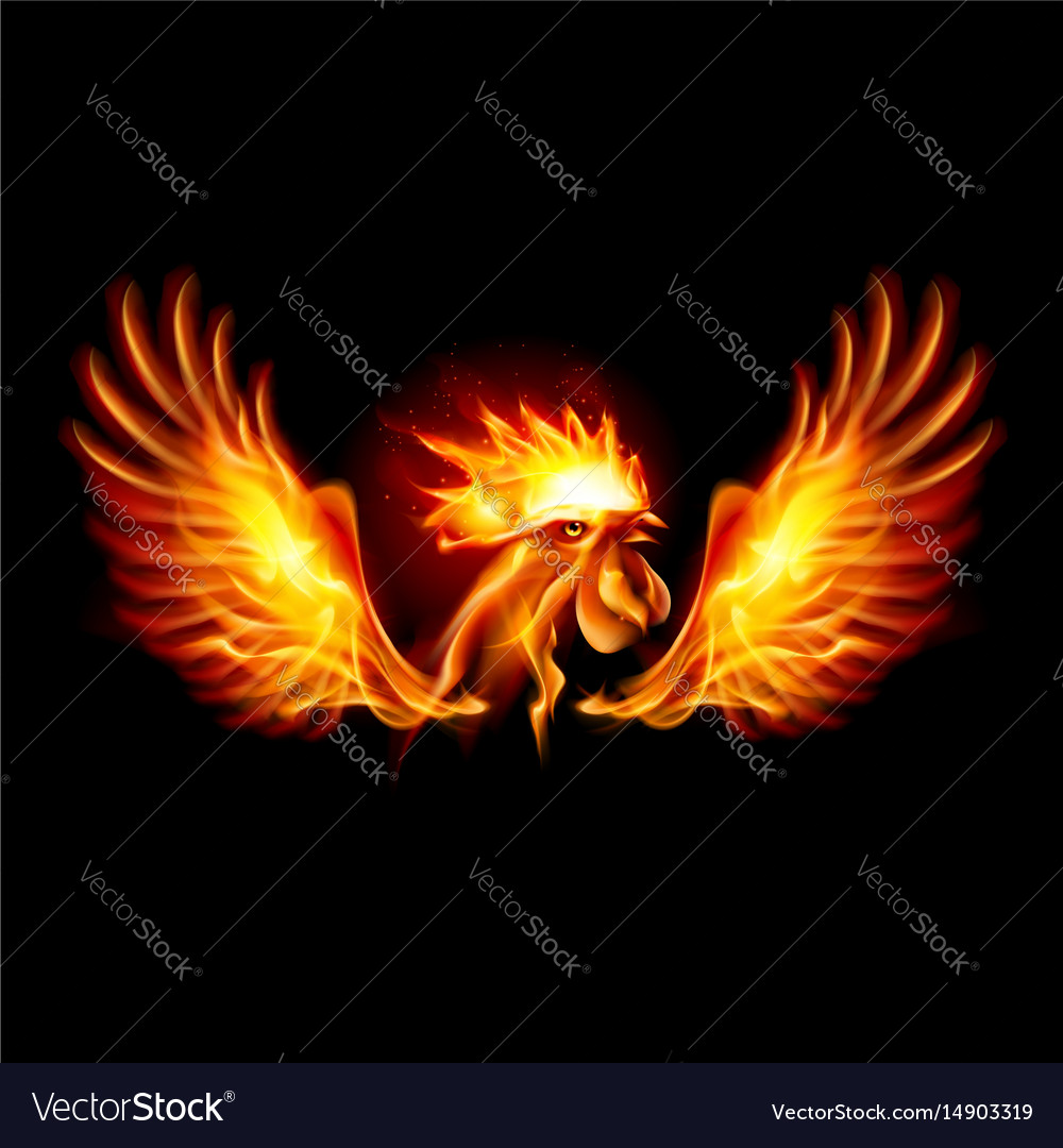 Fire Rooster Symbol Of The New Year By Chinese Vector Image
