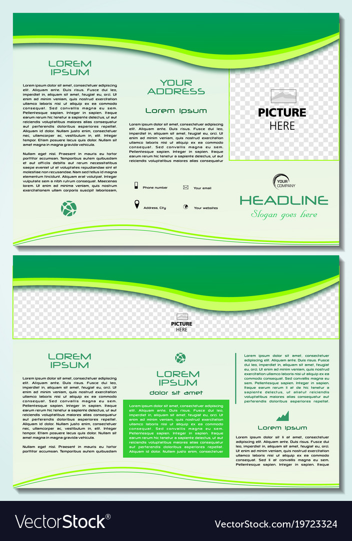 Trifold Brochure Template With Green Waves Vector Image