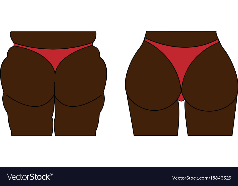 A female fat and thin ass vector image