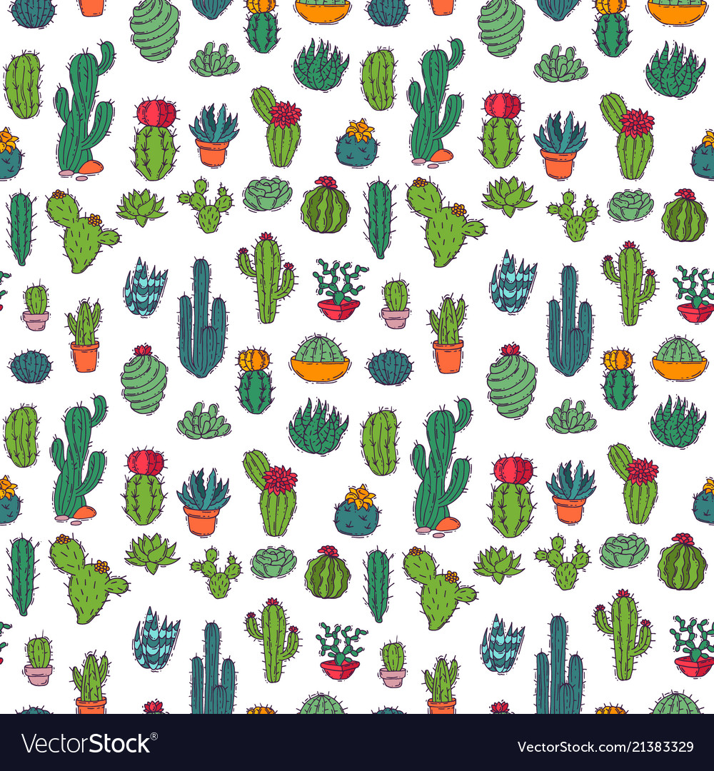 Cactus home nature of green