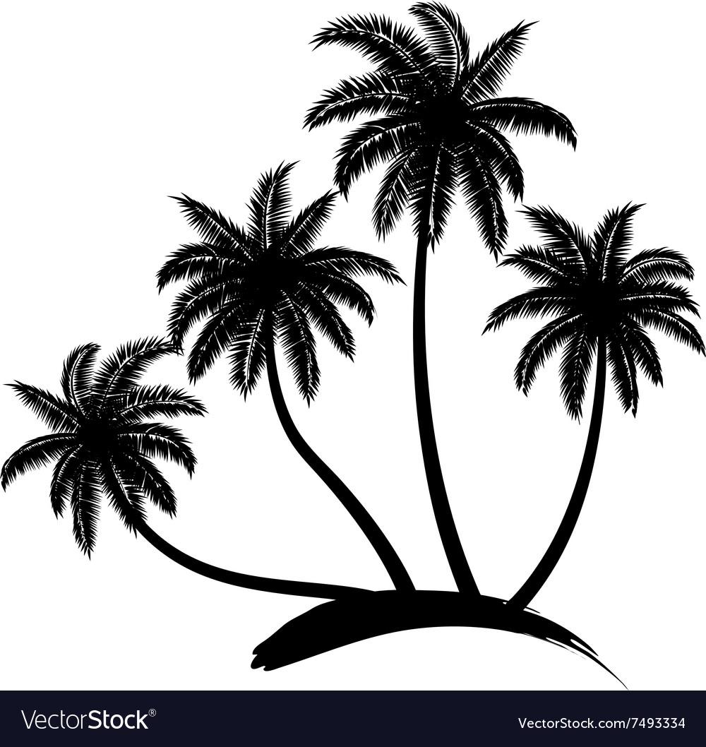 coconut tree royalty free vector image vectorstock rh vectorstock com palm tree vector art palm tree vector art free