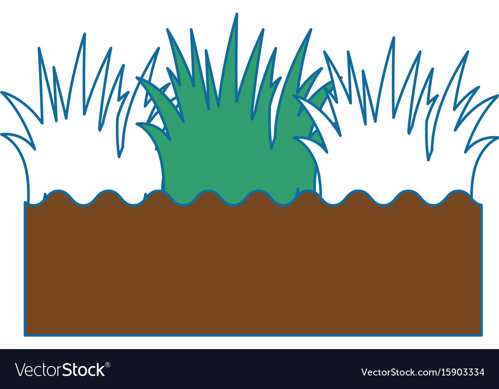 Isolated field grass vector image