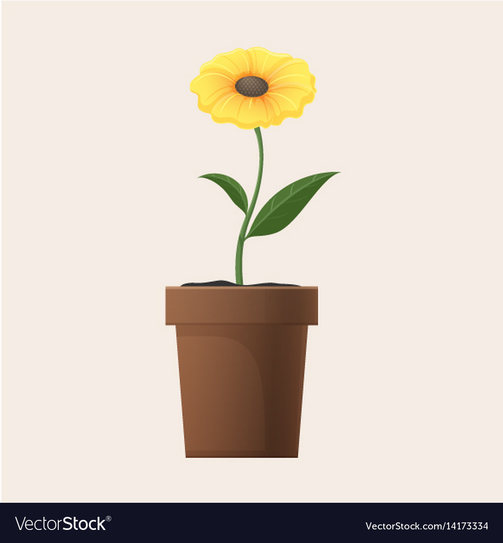 Yellow Flower In Clay Pot Isolated Royalty Free Vector Image