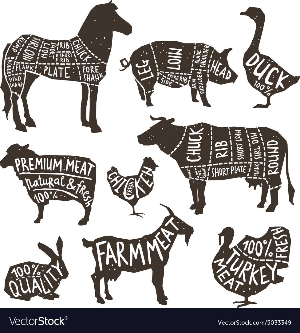 Farm Animals Silhouette Typographics