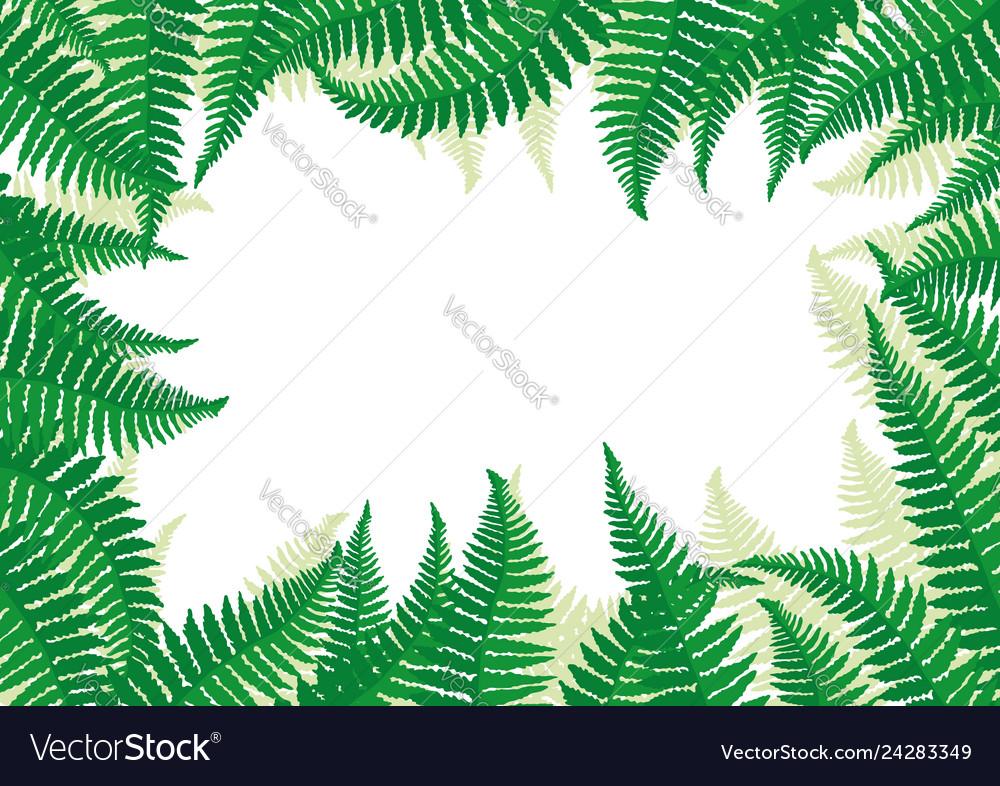 Frame of fern leaves