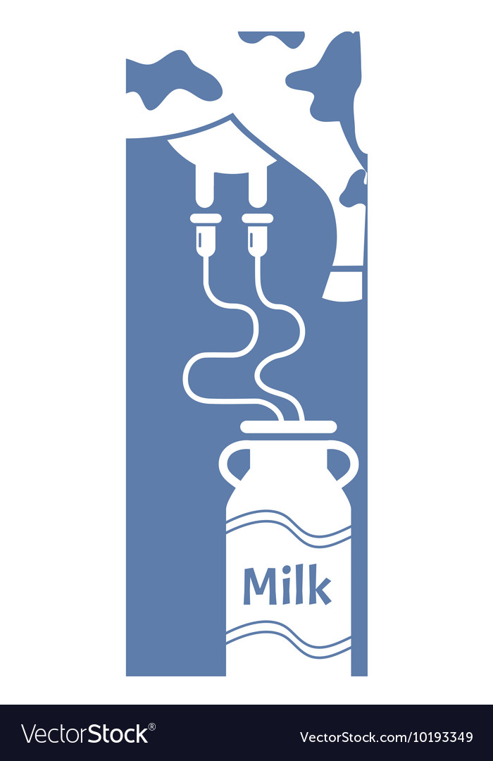 Milk Cow with milking machine Getting Milk From