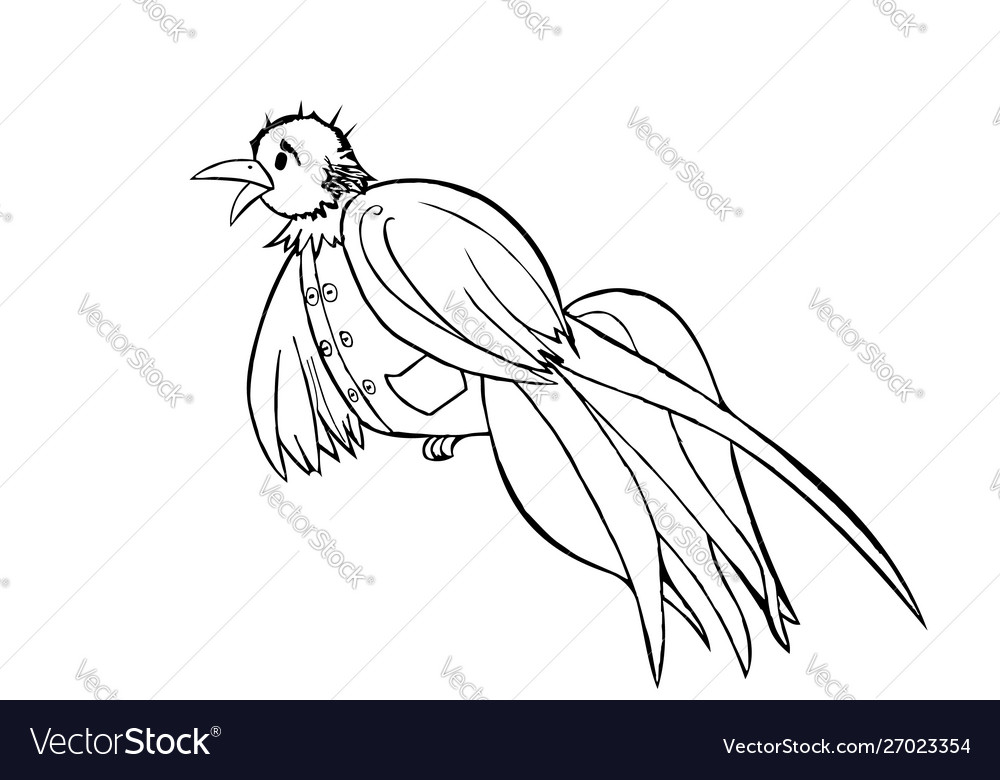 Bird dressed in a vest black and white graphics