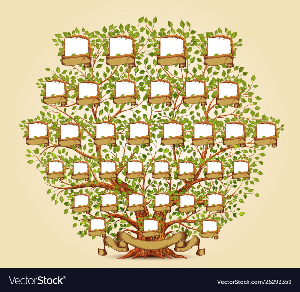 Family Tree Template Royalty Free Vector Image