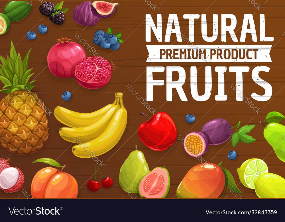 Natural farm ripe fruits or berries cartoon poster