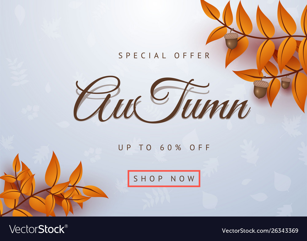 Autumn special offer leaves background