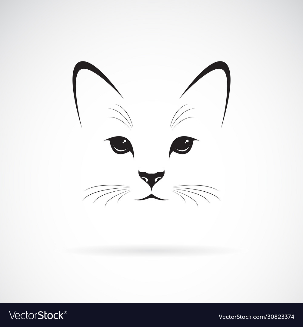 A cat face design on white background pet animals