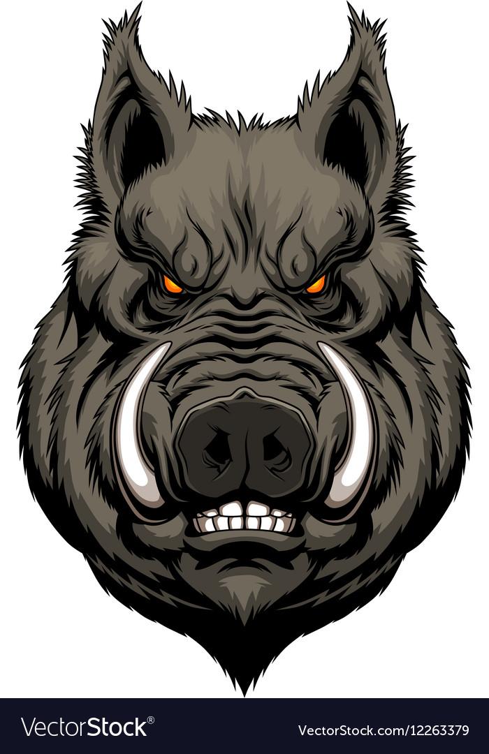 Angry boar head vector image