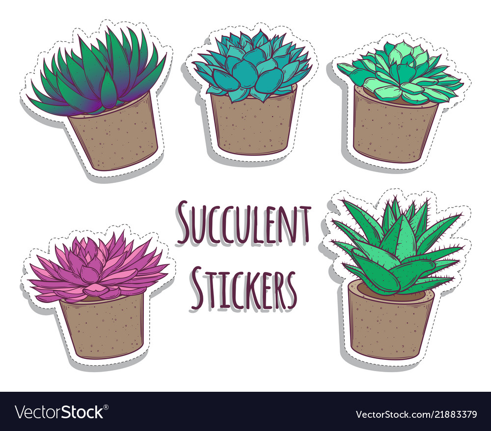 Set of cartoon succulents stickers cute stickers