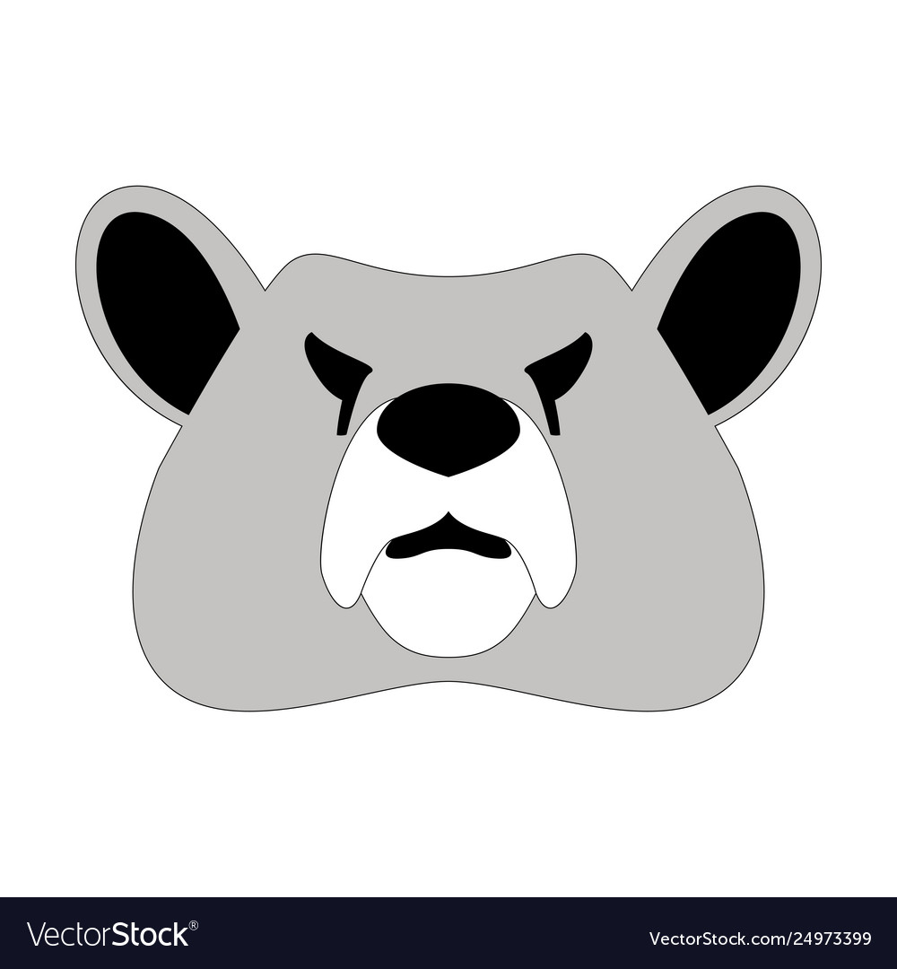 Bear face front view