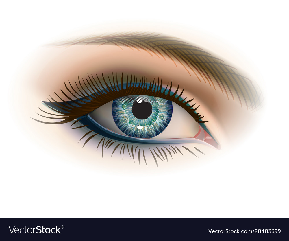 Female gray eye with makeup