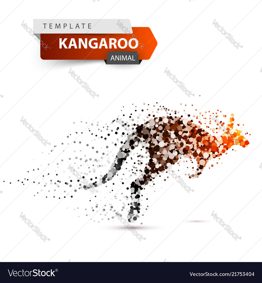 Kangaroo dot onthe white background