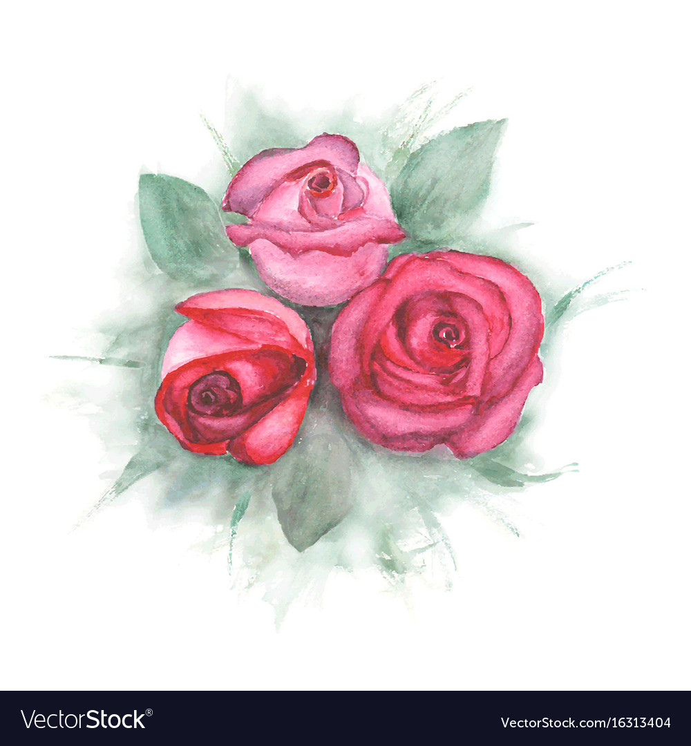 Watercolor painting with roses