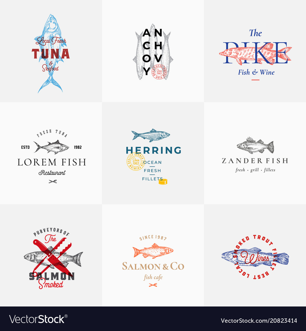 Premium quality retro fish signs or logo
