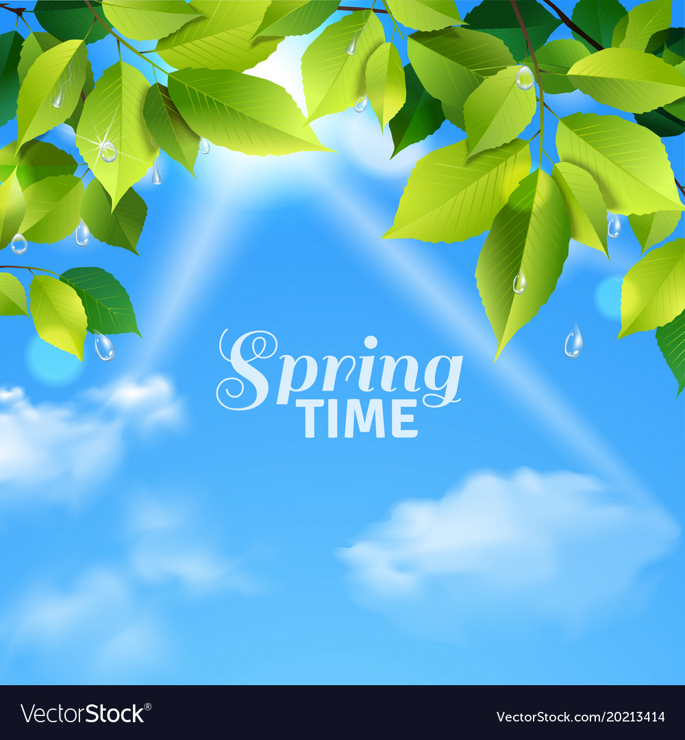 Spring time realistic poster vector image