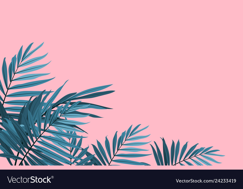 Green palm leaves on a pink background tropical