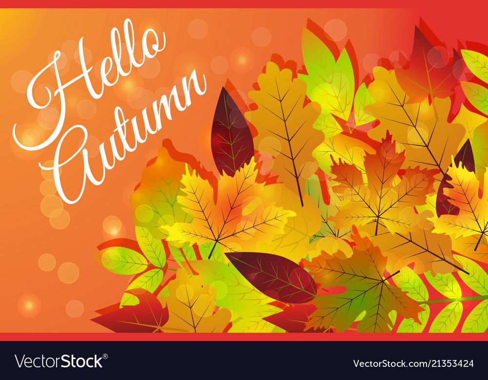 Hello autumn hand drawn nature foliage different
