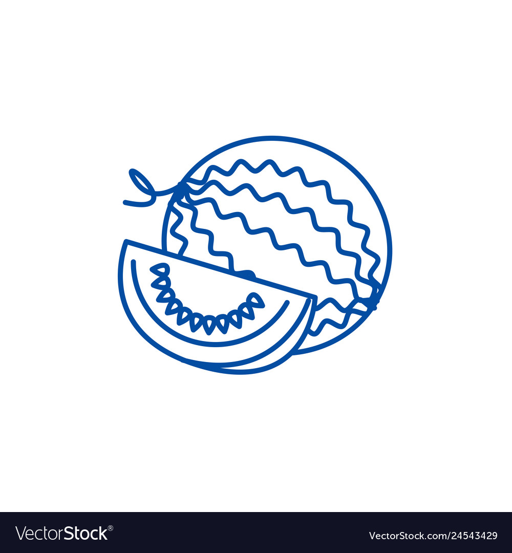 Water melon line icon concept water melon flat