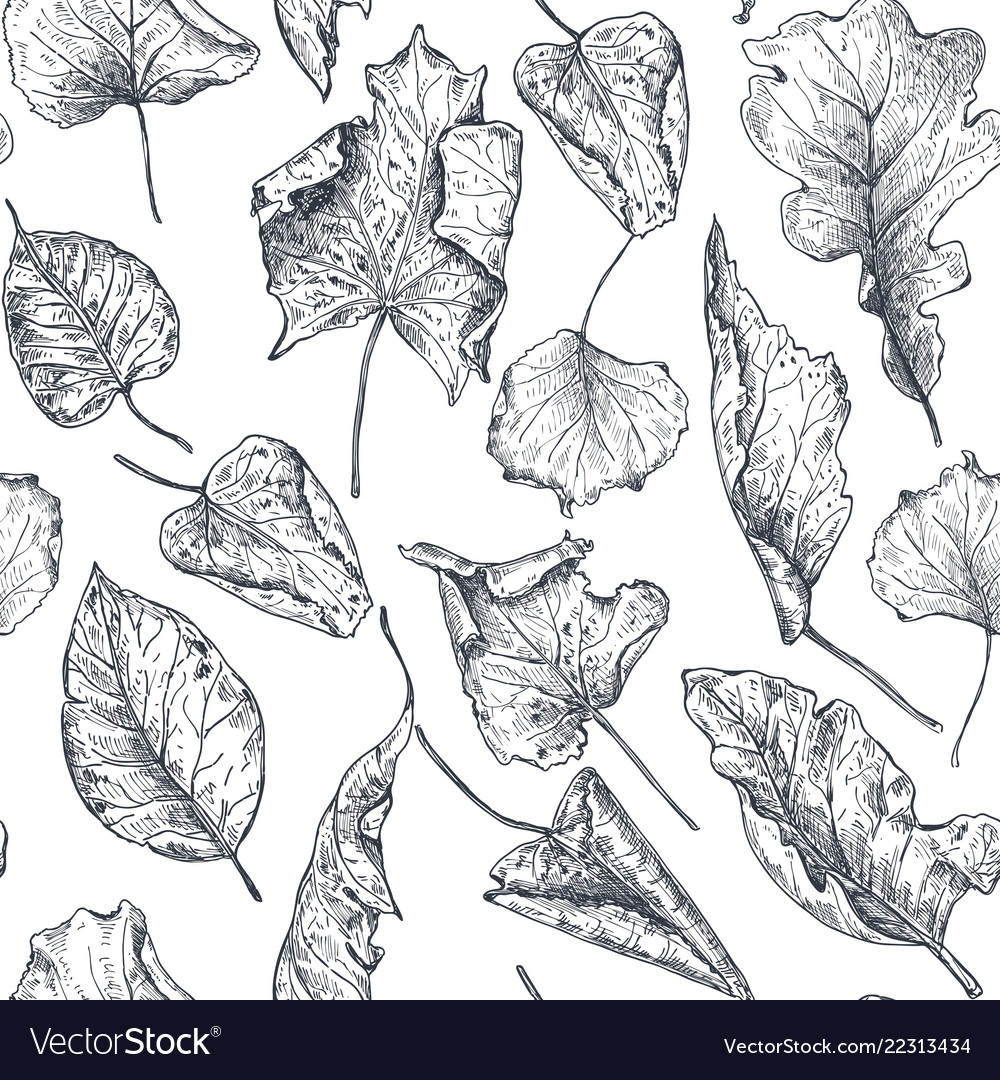 Seamless pattern with hand drawn dry autumn