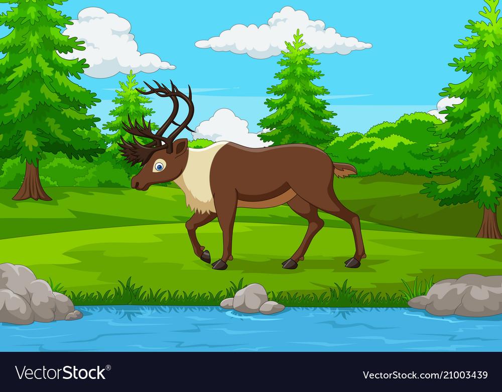 Cartoon elk in the forest