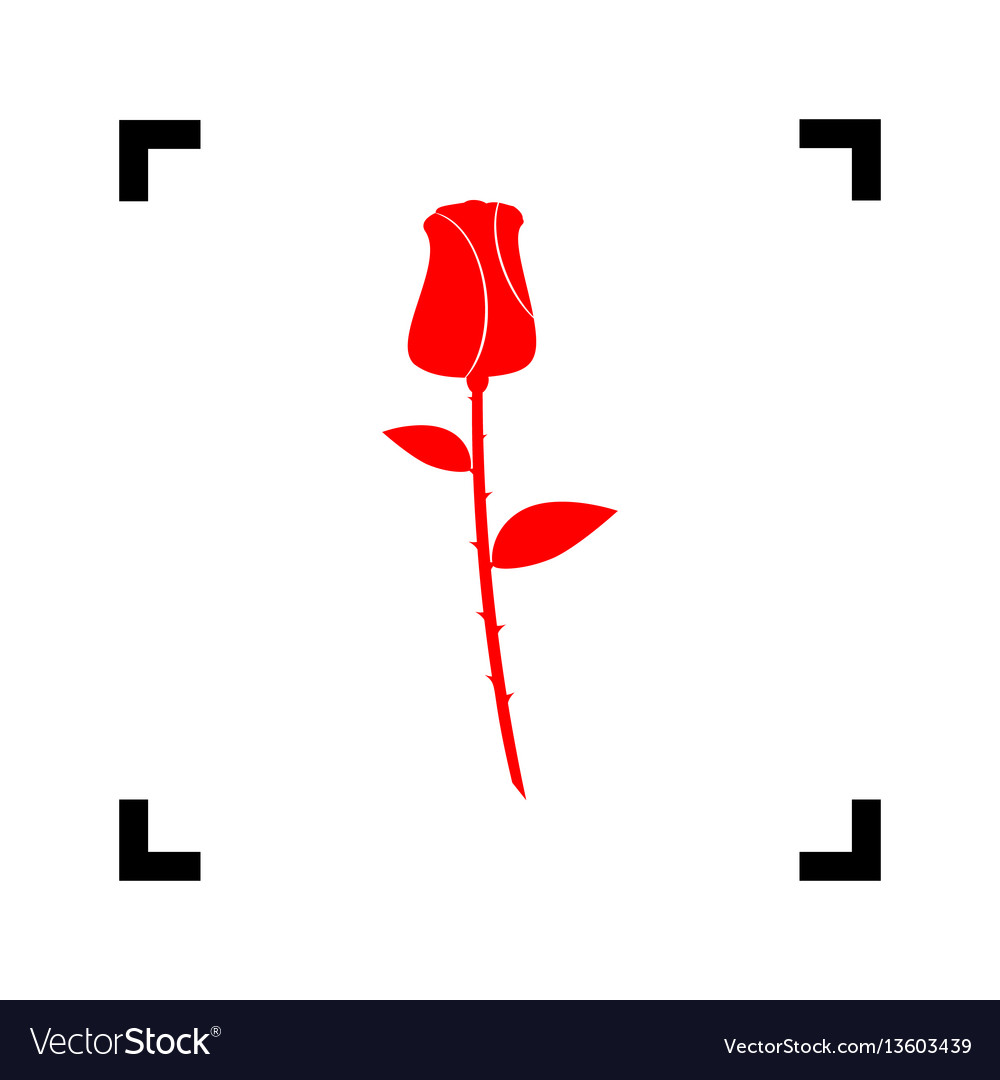 Rose sign red icon inside
