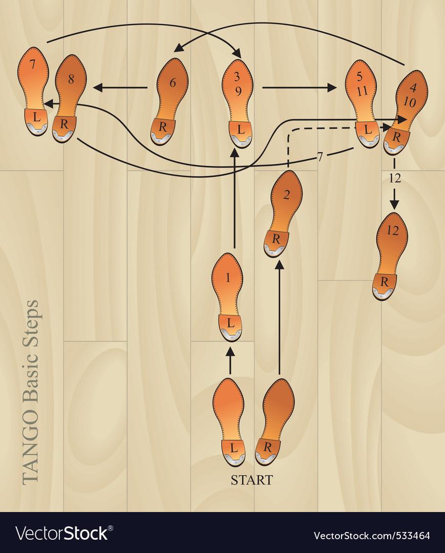 Tango basic steps vector image