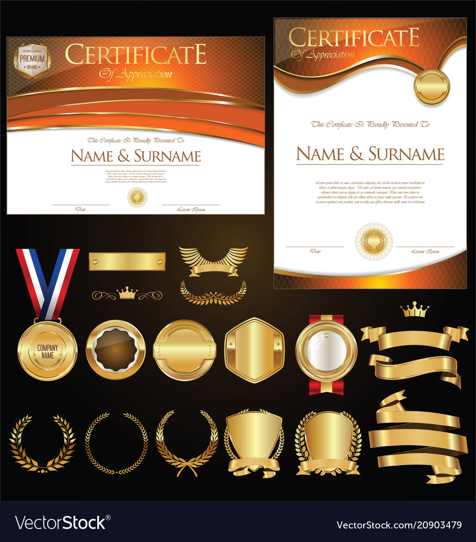 Collection of certificate badges labels shields vector image