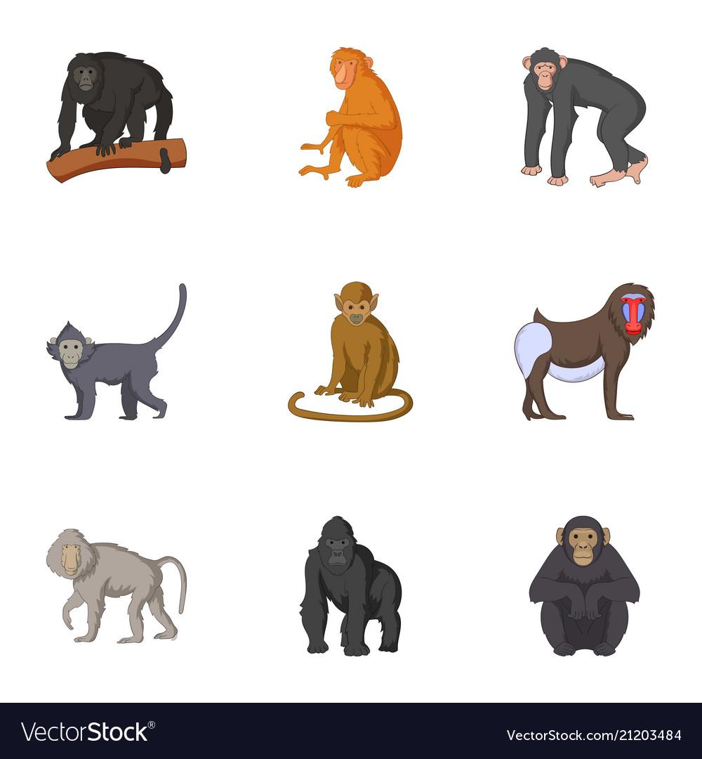 Adult individuals of monkeys icons set