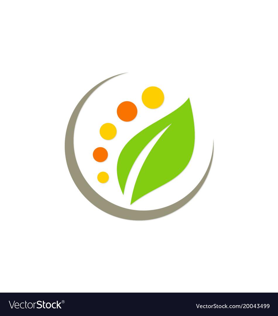 Green leaf nature beauty spa logo vector image