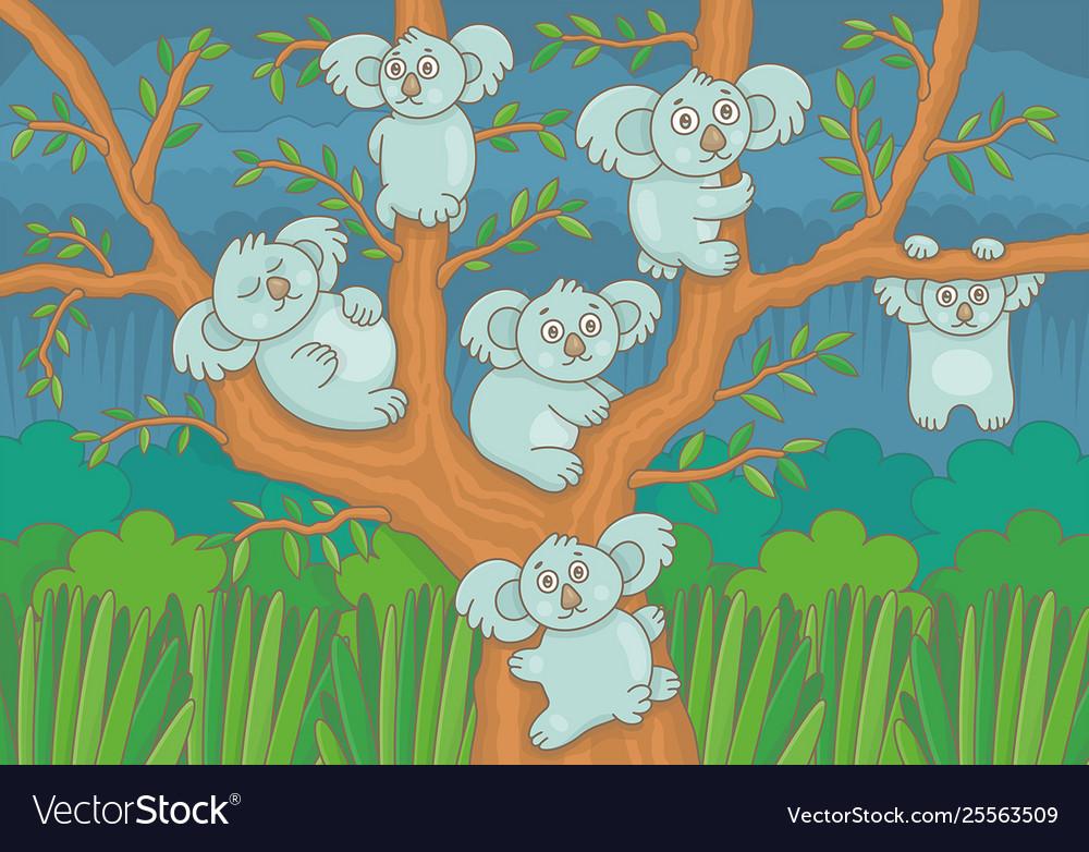 Koalas on a tree