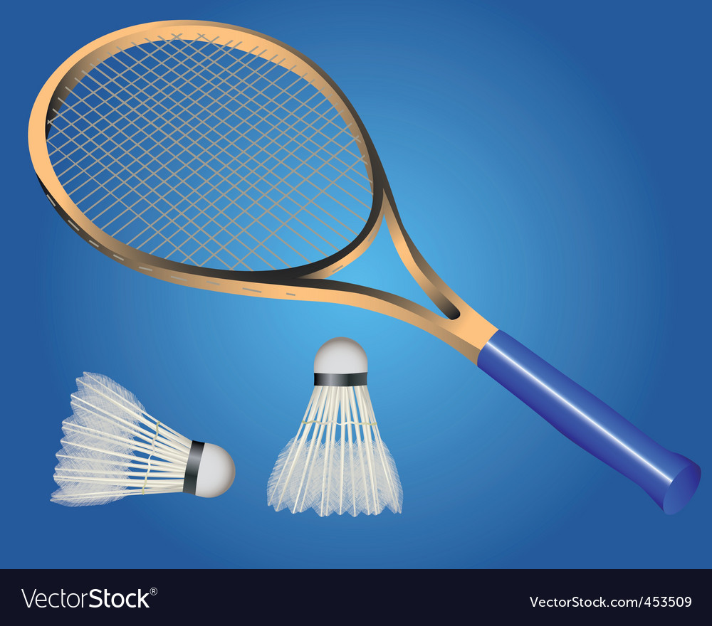 Racquet and two shuttle badminton vector image