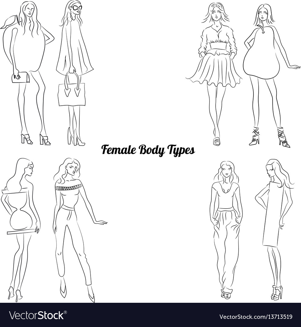 Female body types and body shapes vector image