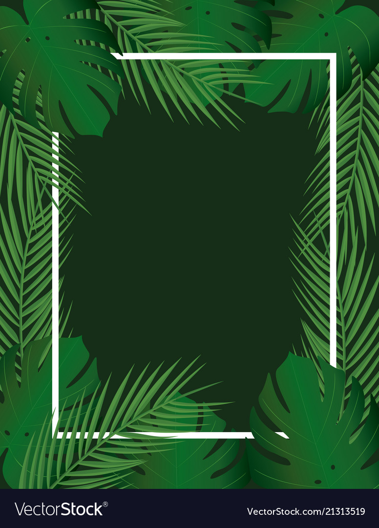 Tropical Leaf Frame Royalty Free Vector Image Vectorstock Acrylic painting of tropical leaves on black card stock paper. vectorstock