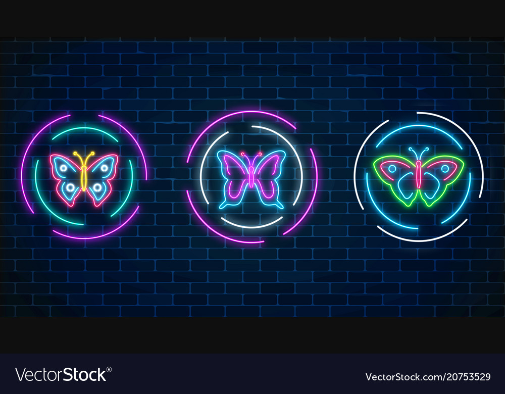 Set of batterfly glowing neon signs in round