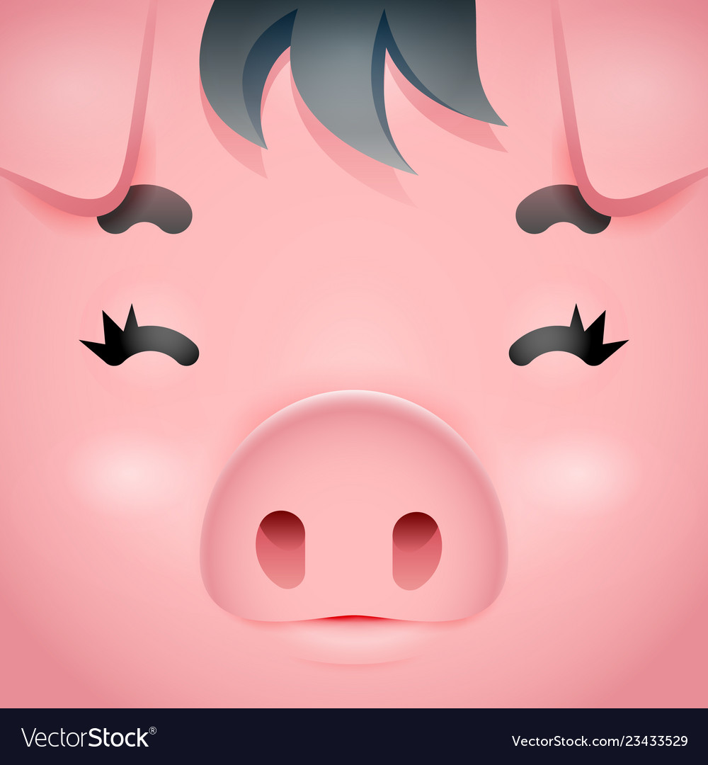 Swine cute pig square cartoon character face